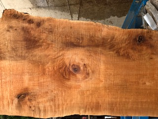 Maple Slab 57251b
