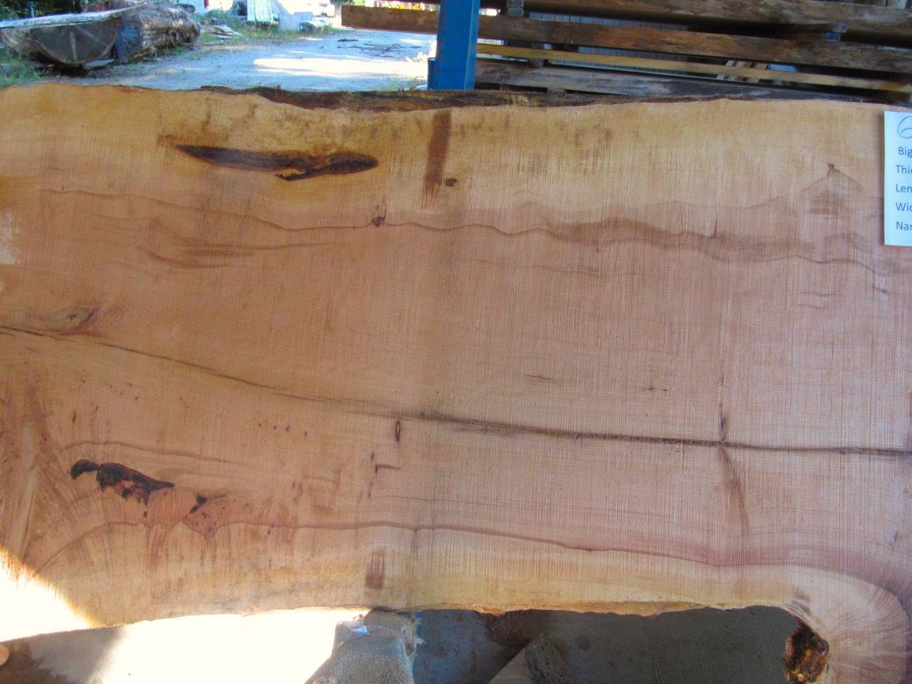 Maple Slab 6064a