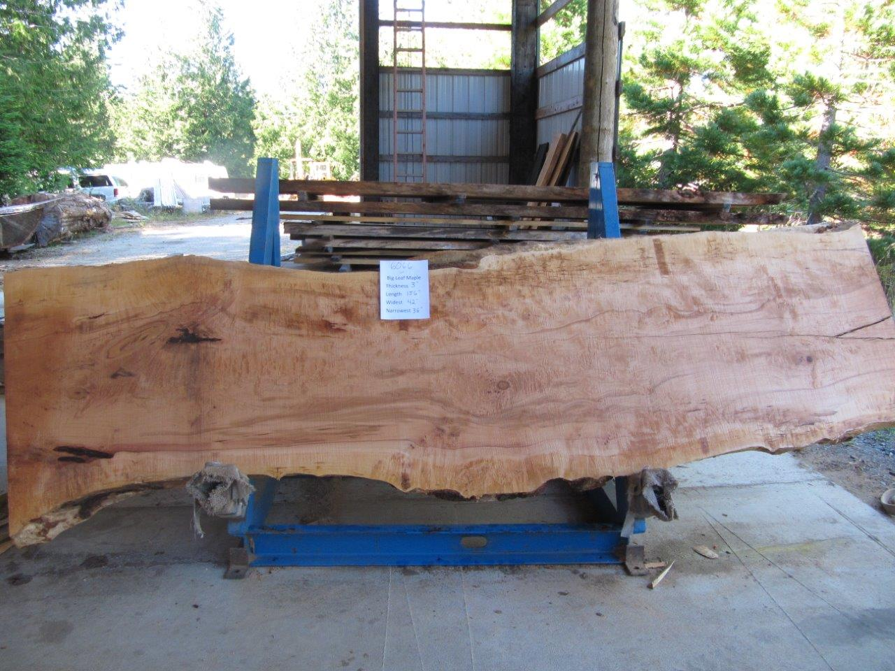 Maple Slab 6066