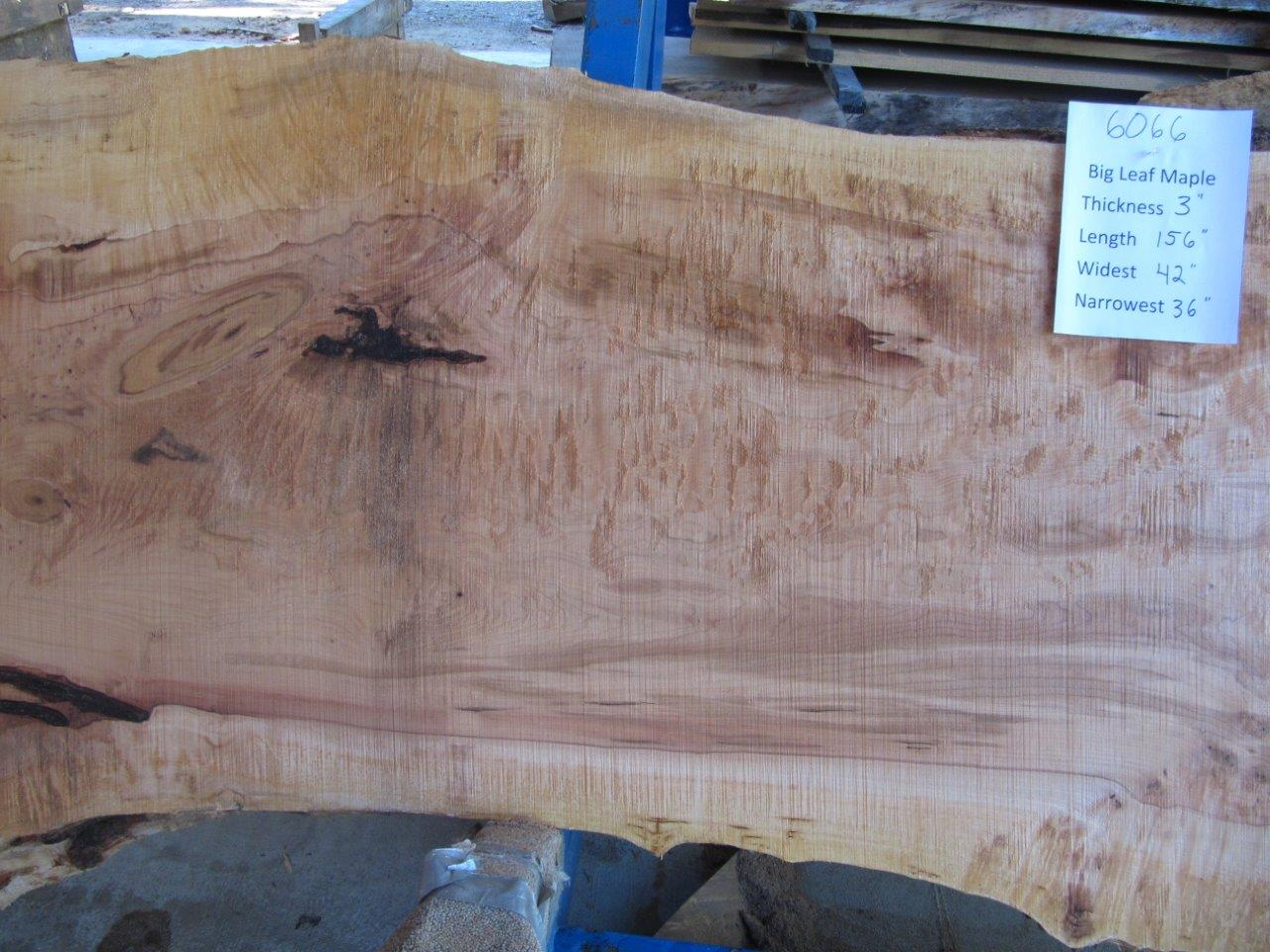 Maple Slab 6066a