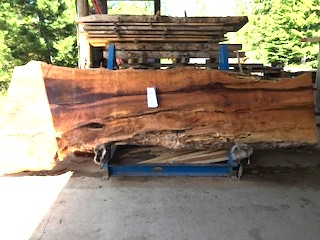 Maple Slab 6077