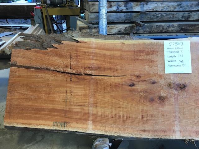 Cedar Slab 57309a