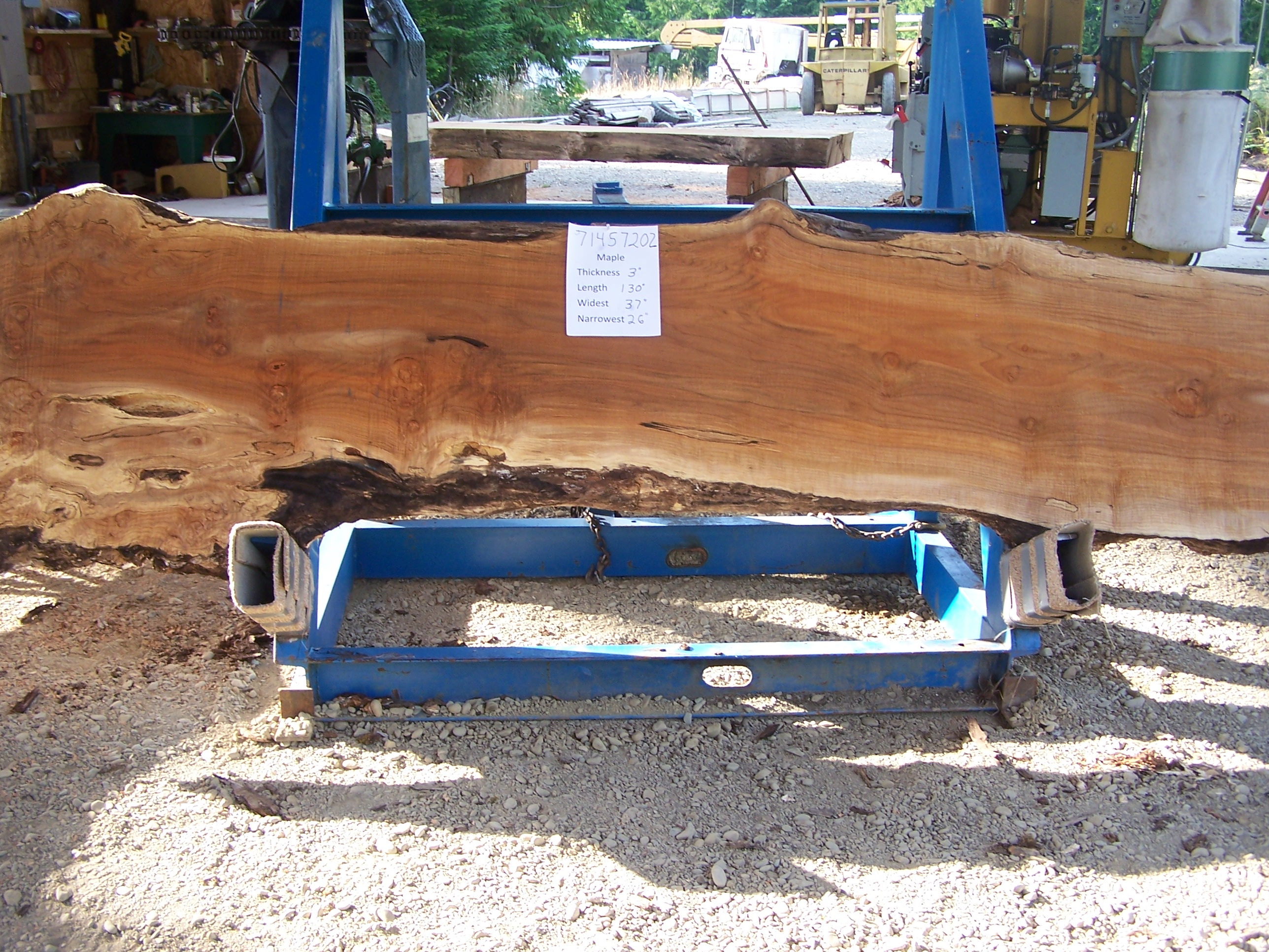 Maple Slab 57202
