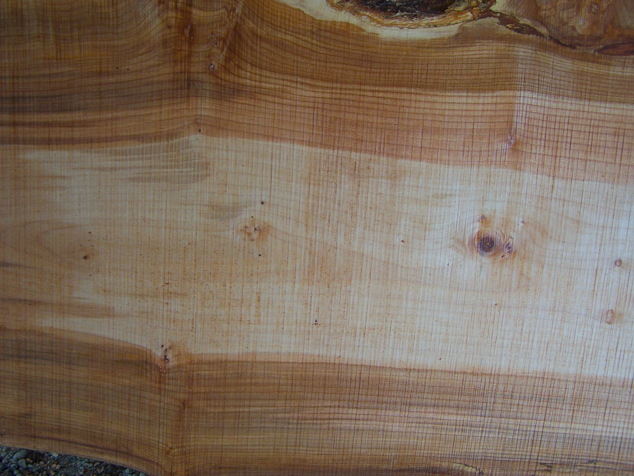 Maple Slab 57206 Close