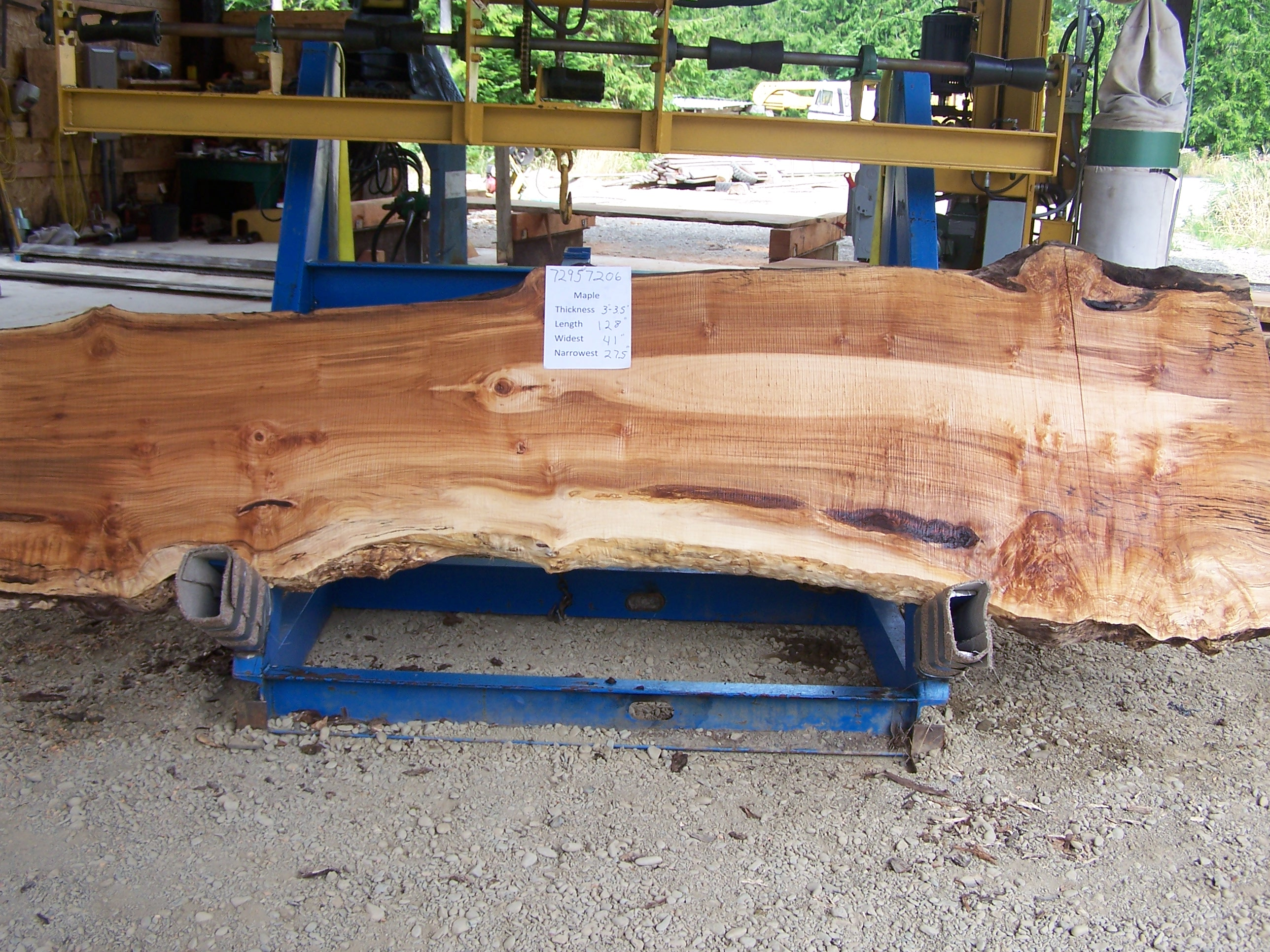 Maple Slab 57206