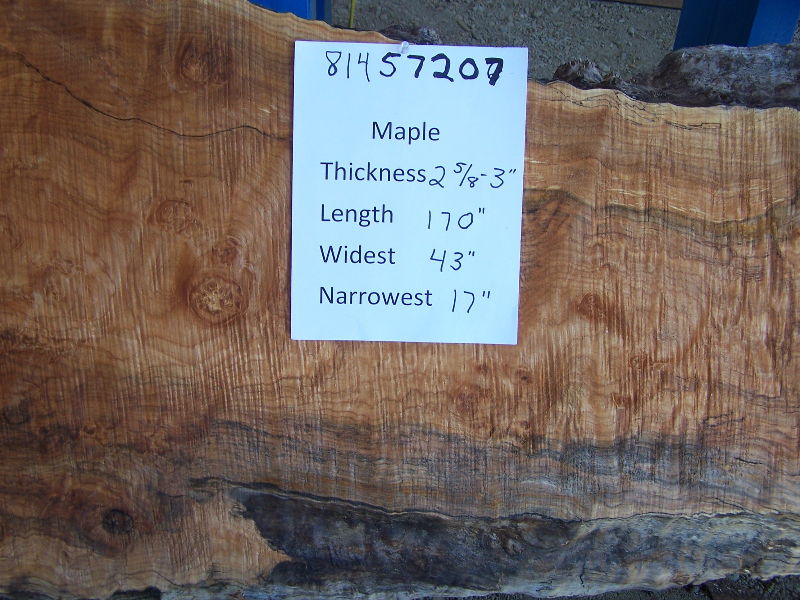 Maple Slab 57207
