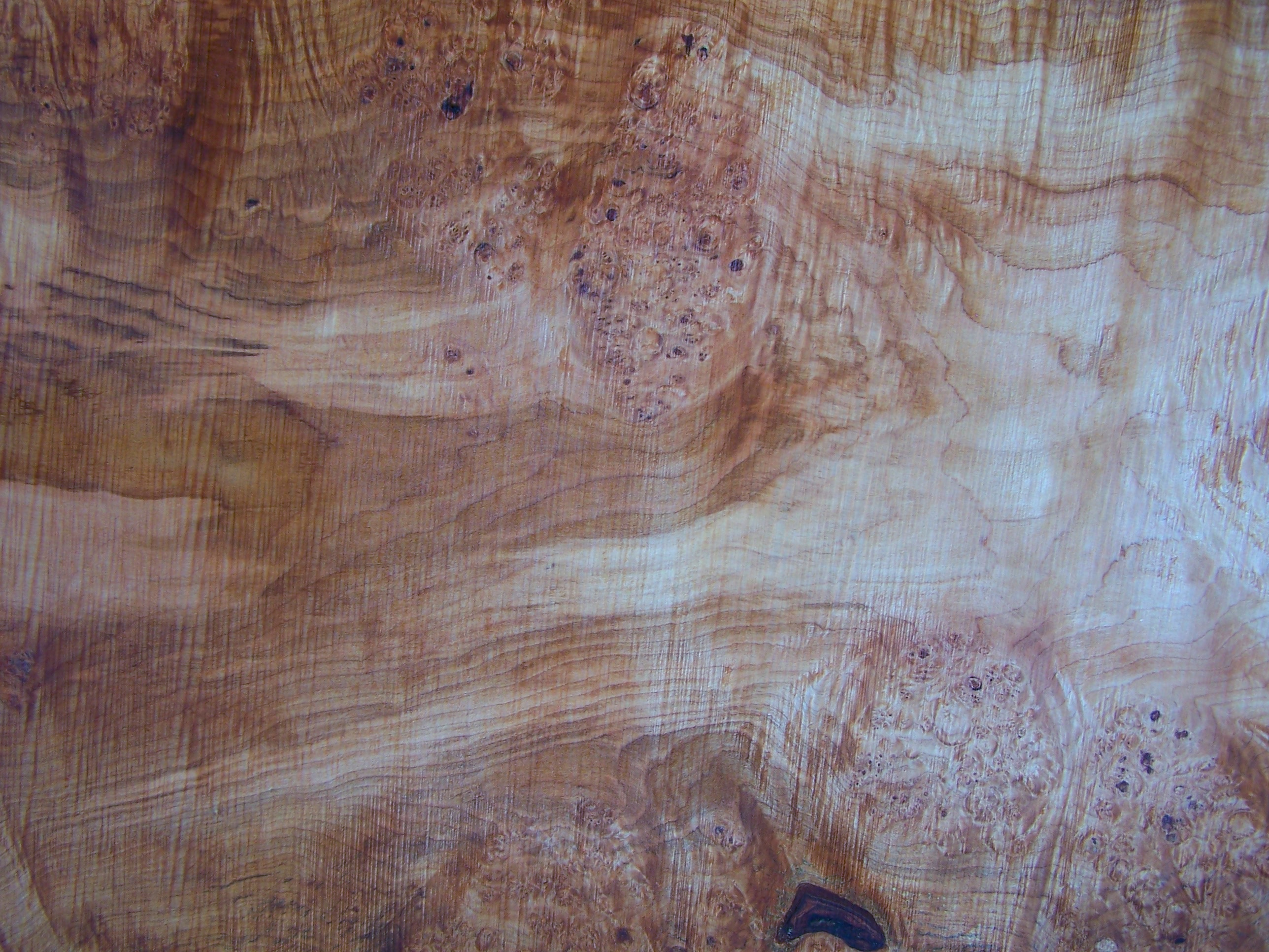 Maple Slab 57208 Close