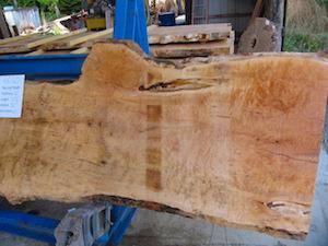 Maple slab 6060b