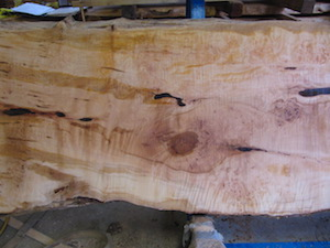 Maple Slab 6071a