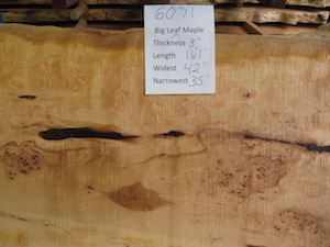 Maple Slab 6071