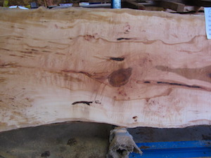 Maple Slab 6072a