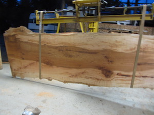 Maple Slab 6075a