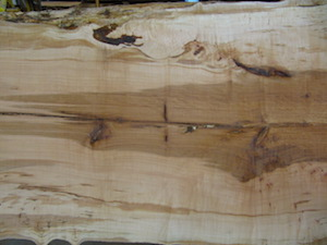 Maple Slab 6075b