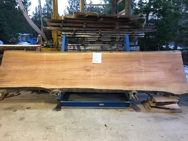 Spruce Slab 57285