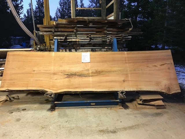 Spruce Slab 57286